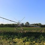 320px-Soy_Bean_Field_with_Central_Pivot_Irrigation_Sprinkler_Summerfield_Township_Michigan