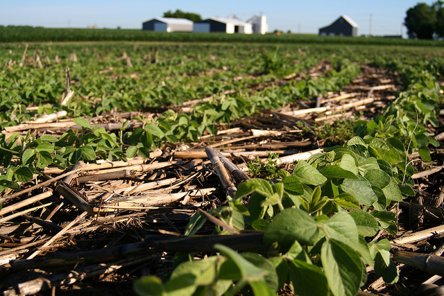 Healthy soil management? Yes please. (Paige Buck/ USDA-NRCS IL)