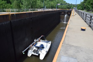 Locks have become a superhighway, both for ships and invasive species. (via Lauren K. Smith)
