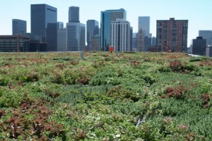 Installing a green roof to manage stormwater can take the stress off aging infrastructure and create spaces of peaceful green amidst the grey. (via EPA)